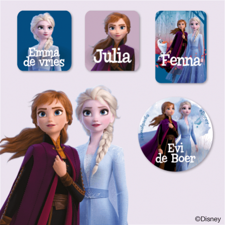 Disney Frozen 2 Kledingstickers